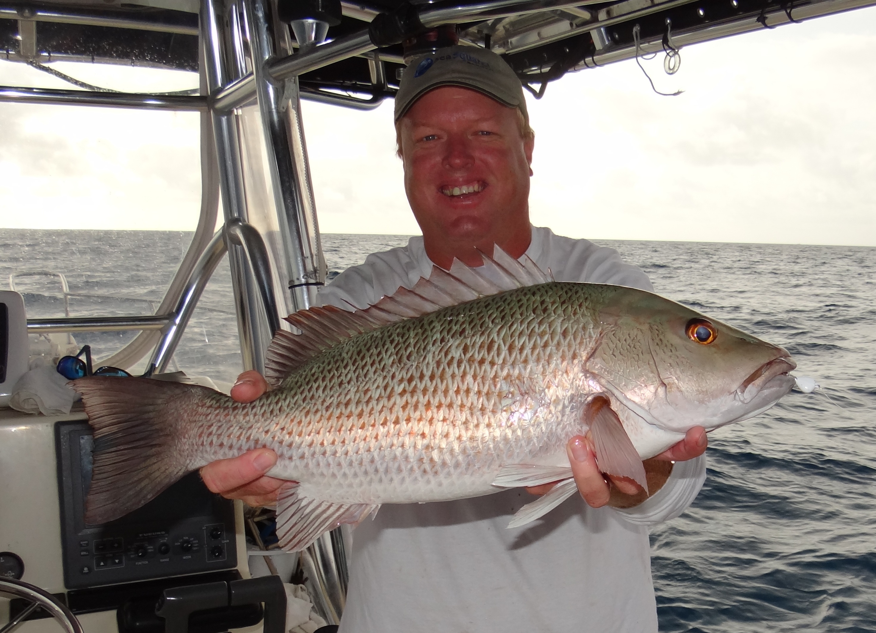 Mutton snapper seasquared charters for Snapper fish florida