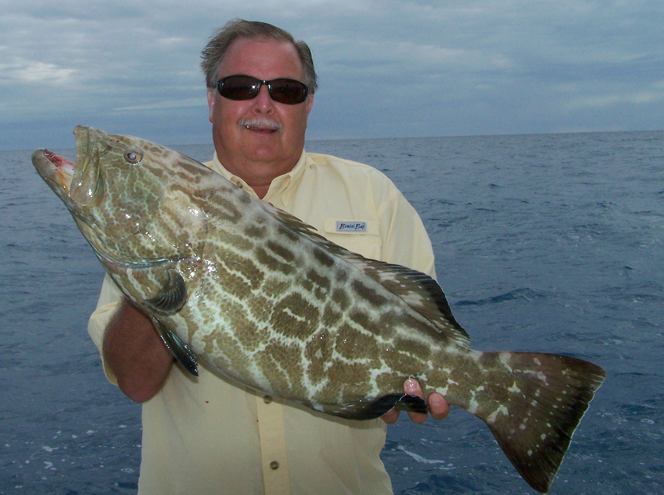 Florida keys fishing season all the best fish in 2018 for When is fishing season